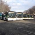 I nuovi bus MAN Lion's City L di Novara
