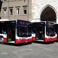 I nuovi MAN Lion's City di SETA per Piacenza Foto SETA