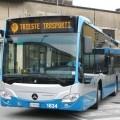 I nuovi bus Mercedes Citaro di Trieste Trasporti - Foto Trieste Trasporti