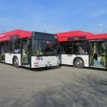 I bus MAN A21 di Seta Reggio Emilia rinnovati - Foto SETA